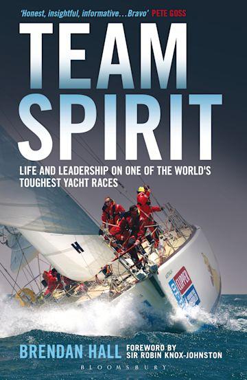 Team Spirit cover