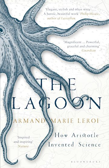 The Lagoon cover