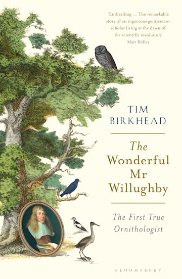 The Wonderful Mr Willughby cover