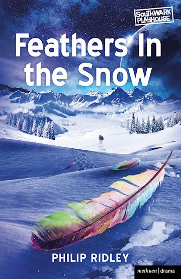 Feathers in the Snow cover