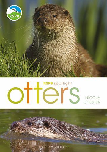RSPB Spotlight: Otters cover