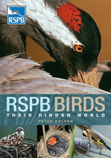 RSPB Birds: their Hidden World cover