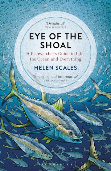 Eye of the Shoal cover