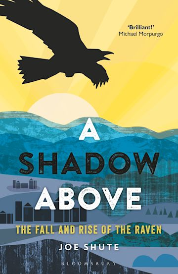 A Shadow Above cover