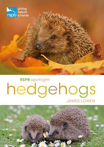 RSPB Spotlight Hedgehogs cover