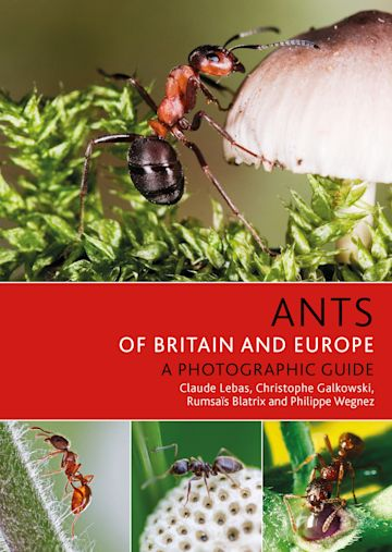 Ants of Britain and Europe cover