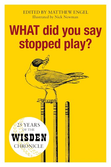 WHAT Did You Say Stopped Play? cover