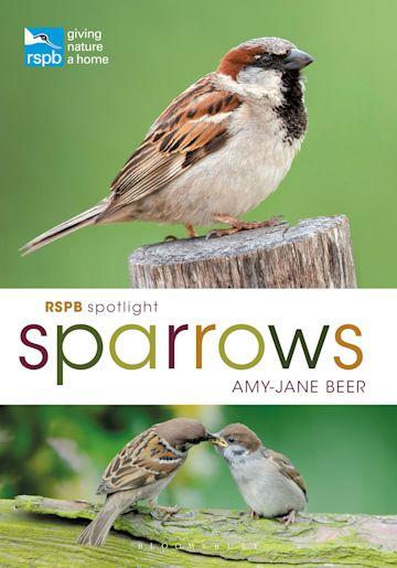 RSPB Spotlight Sparrows cover