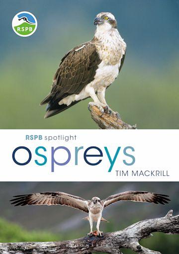 RSPB Spotlight Ospreys cover