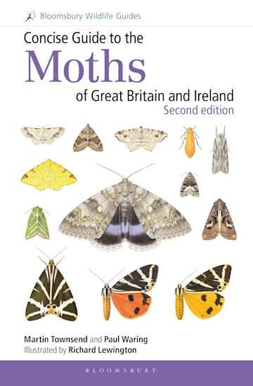 Concise Guide to the Moths of Great Britain and Ireland: Second edition cover