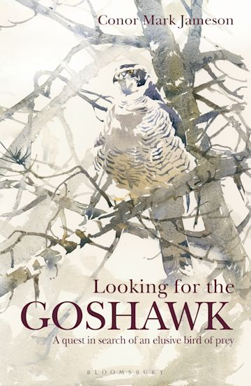Looking for the Goshawk cover