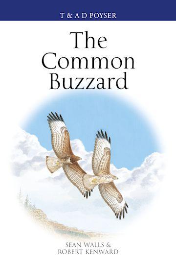 The Common Buzzard cover