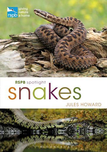 RSPB Spotlight Snakes cover