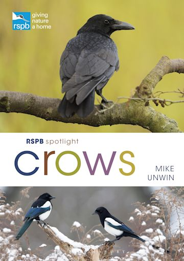 RSPB Spotlight Crows cover