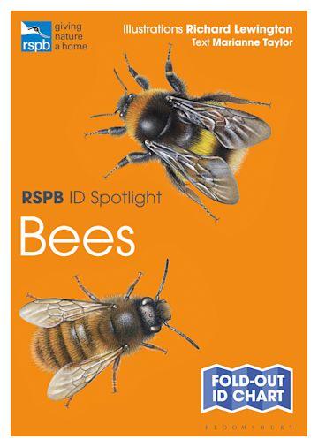 RSPB ID Spotlight - Bees cover
