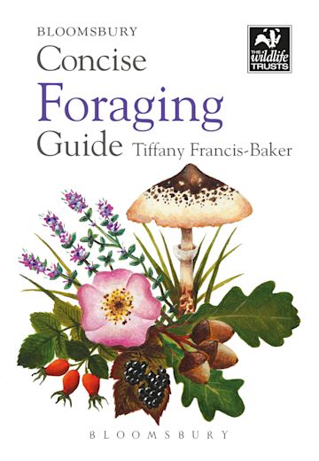 Concise Foraging Guide cover