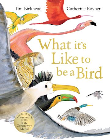 What it's Like to be a Bird cover
