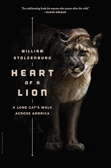 Heart of a Lion cover