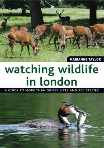 Watching Wildlife In London cover