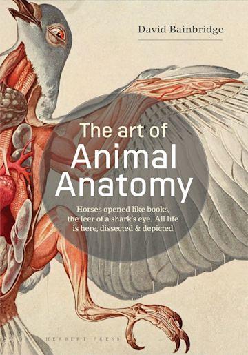 The Art of Animal Anatomy cover