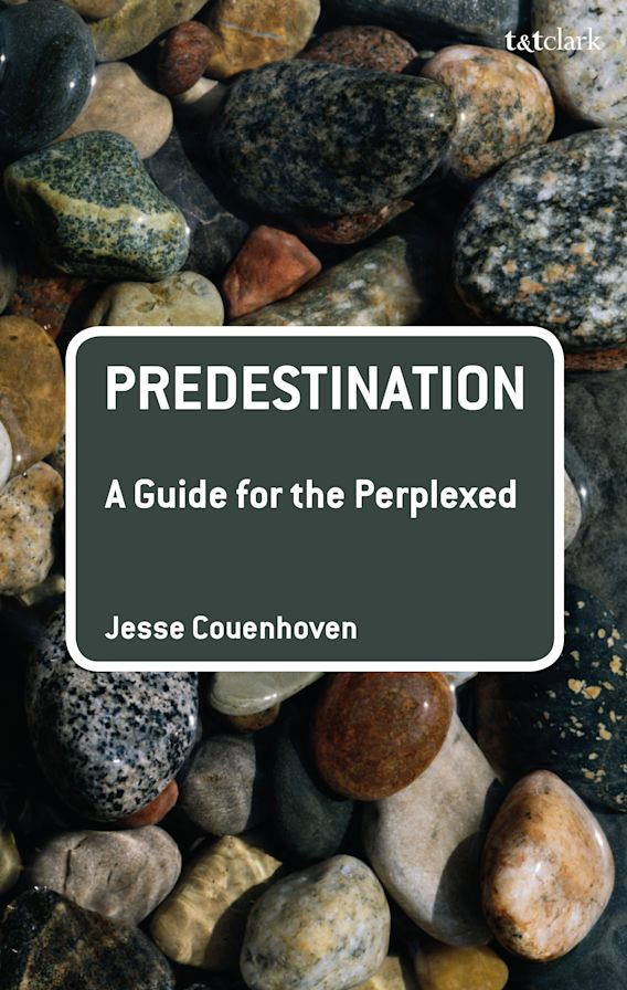 Predestination: A Guide for the Perplexed cover