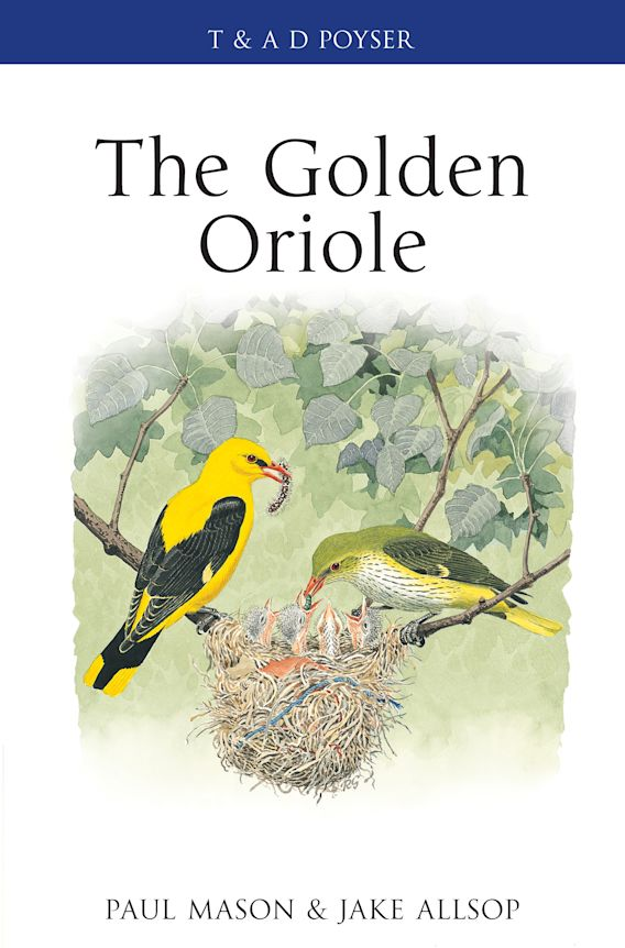 The Golden Oriole cover