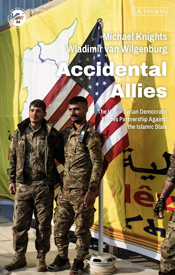 Accidental Allies cover