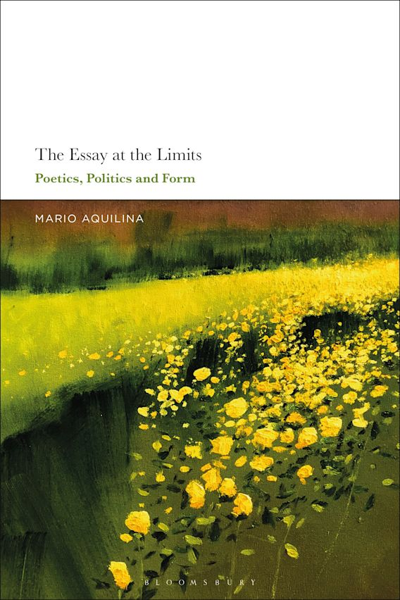 The Essay At the Limits cover