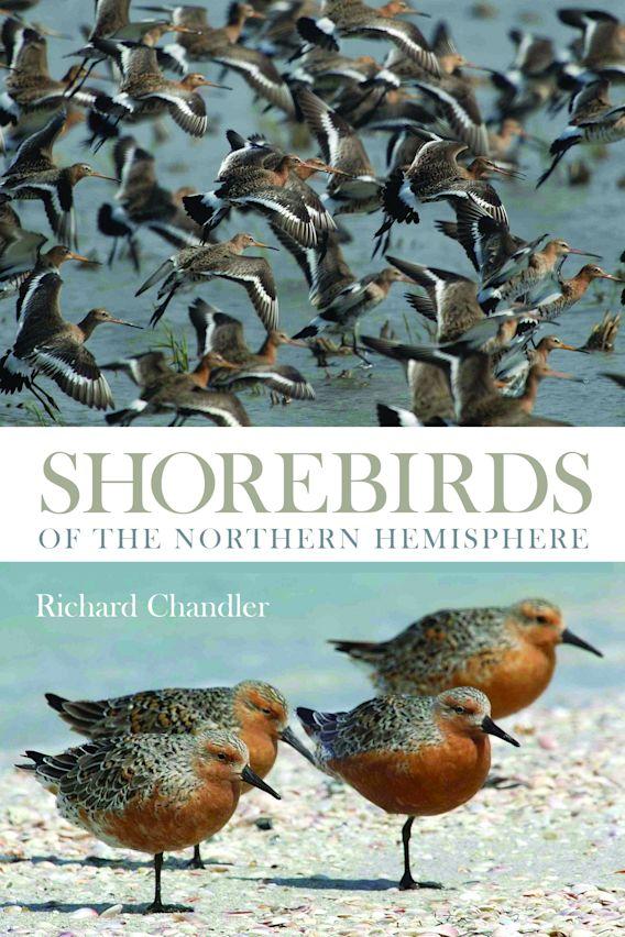 Shorebirds of the Northern Hemisphere cover