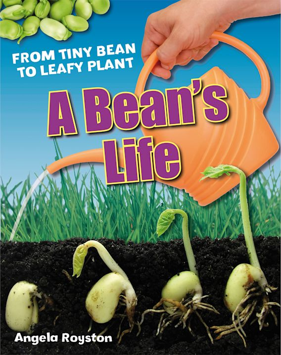 A Bean's Life cover