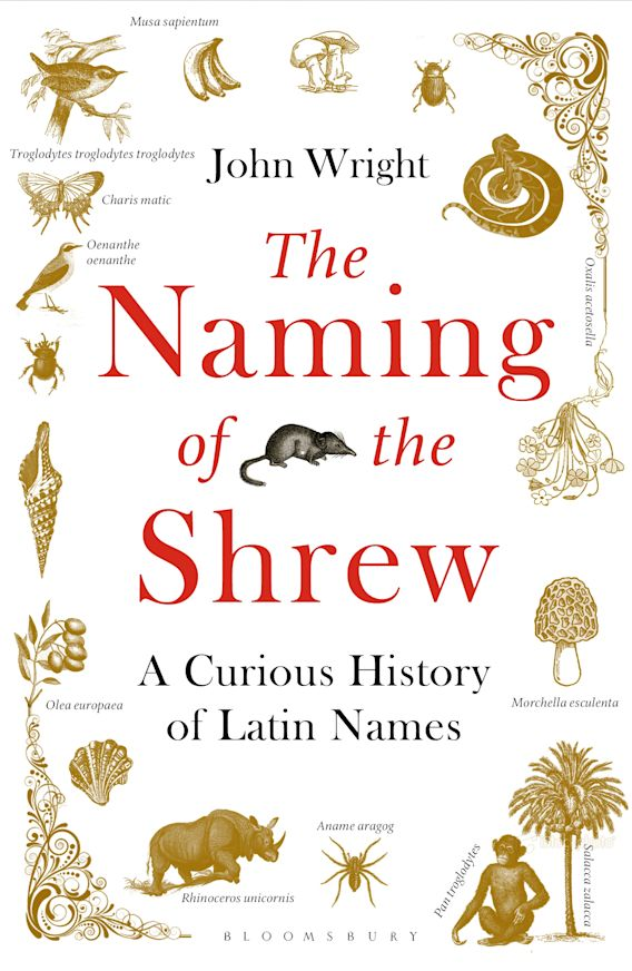 The Naming of the Shrew cover