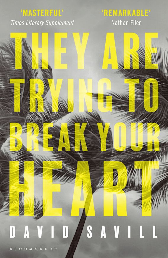 They are Trying to Break Your Heart cover