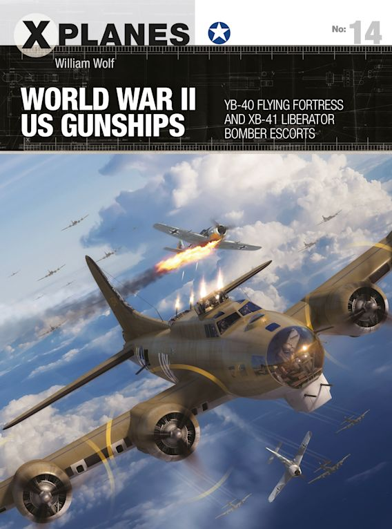 World War II US Gunships cover