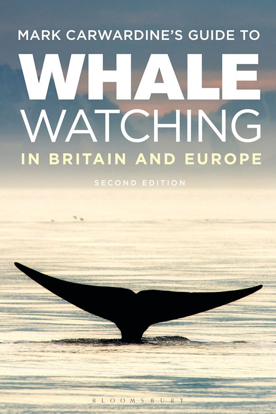 Mark Carwardine's Guide To Whale Watching In Britain And Europe cover