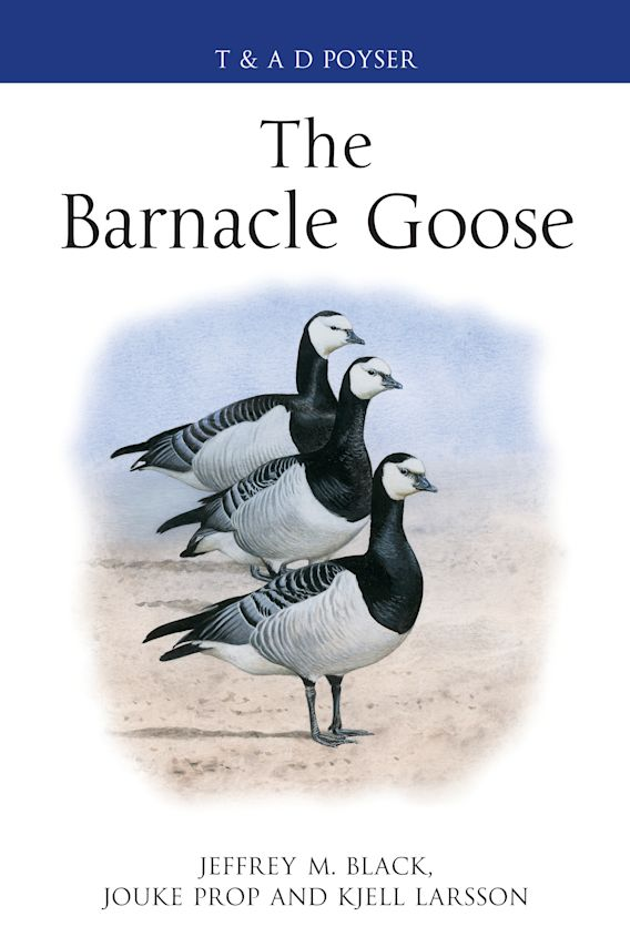 The Barnacle Goose cover
