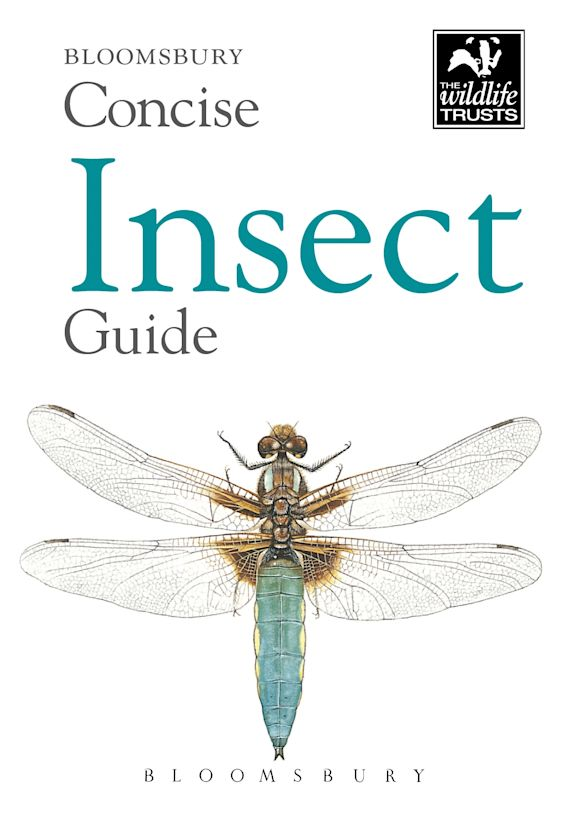 Concise Insect Guide cover