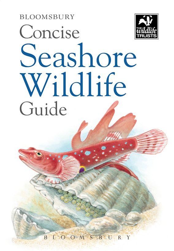 Concise Seashore Wildlife Guide cover
