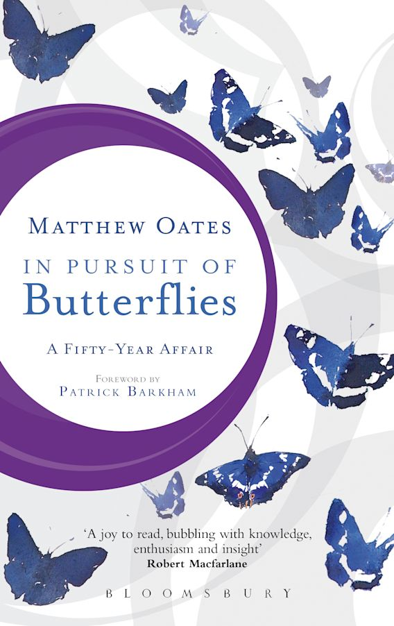 In Pursuit of Butterflies cover