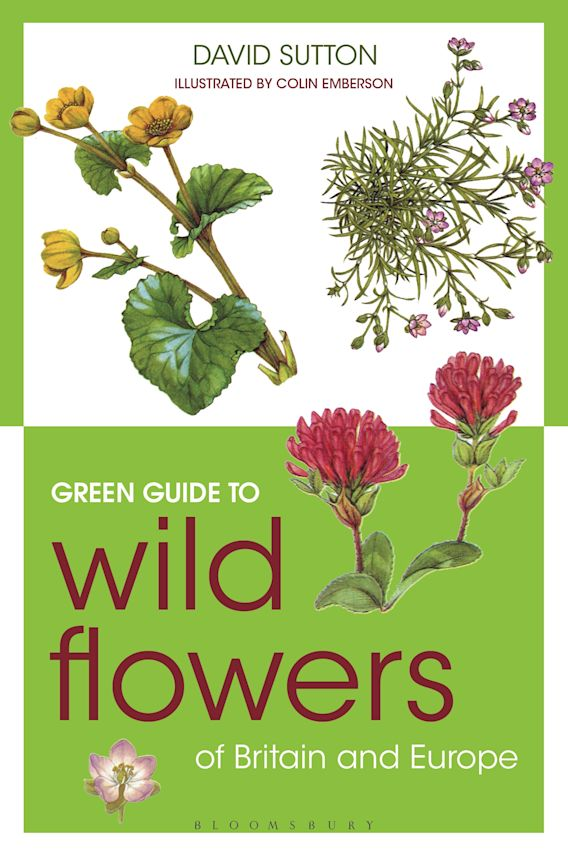 Green Guide to Wild Flowers Of Britain And Europe cover