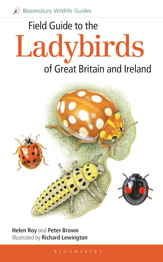 Field Guide to the Ladybirds of Great Britain and Ireland cover