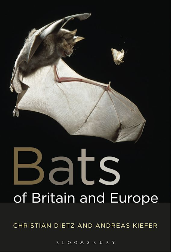 Bats of Britain and Europe cover