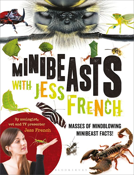 Minibeasts with Jess French cover