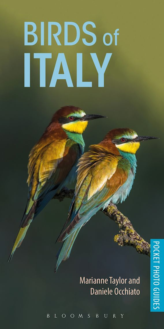 Birds of Italy cover