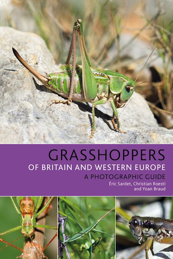 Grasshoppers of Britain and Western Europe cover