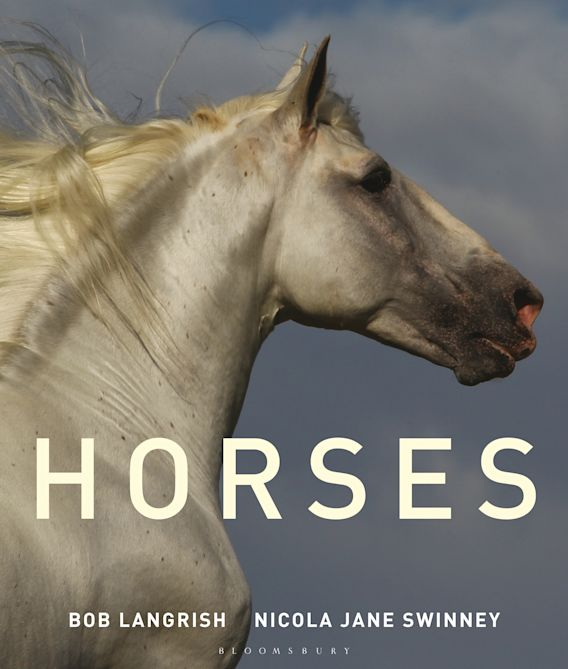 Horses cover