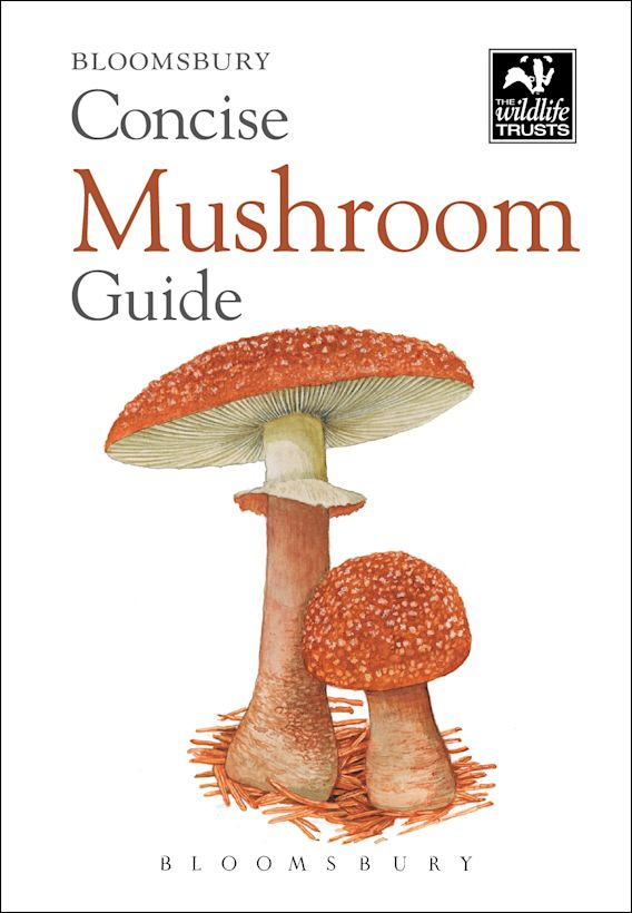 Concise Mushroom Guide cover