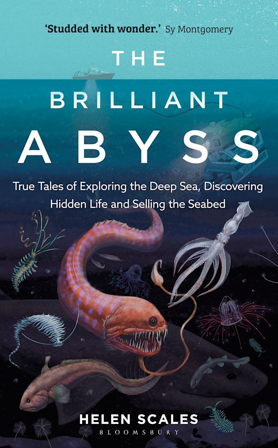 The Brilliant Abyss cover