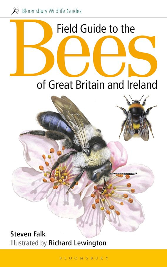 Field Guide to the Bees of Great Britain and Ireland cover