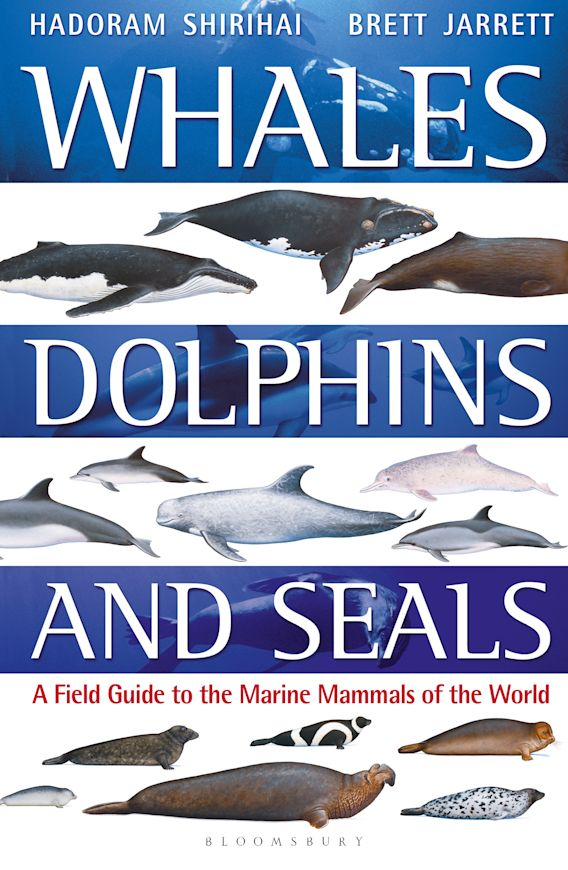 Whales, Dolphins and Seals cover