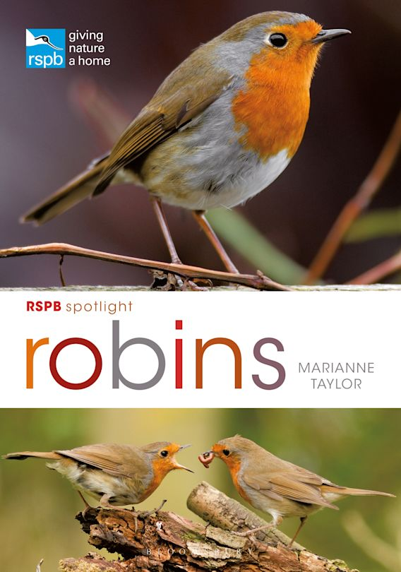 RSPB Spotlight: Robins cover